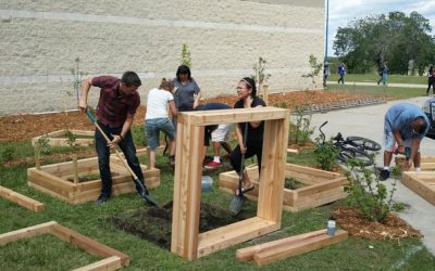 Edible School Yards for Edmonton